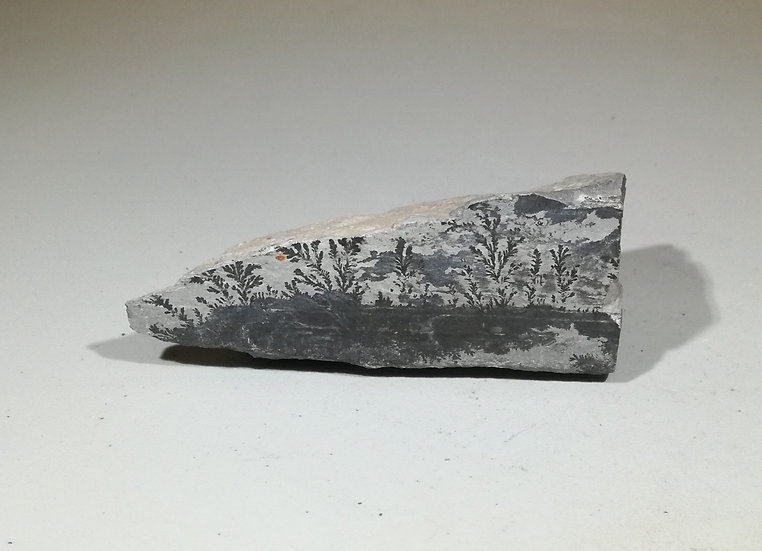 Manganese Oxide Dendrite Formation