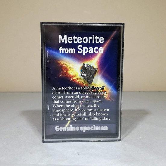 PREMIUM Meteorite Fragment - Campo Del Cielo Meteorite In Display Case