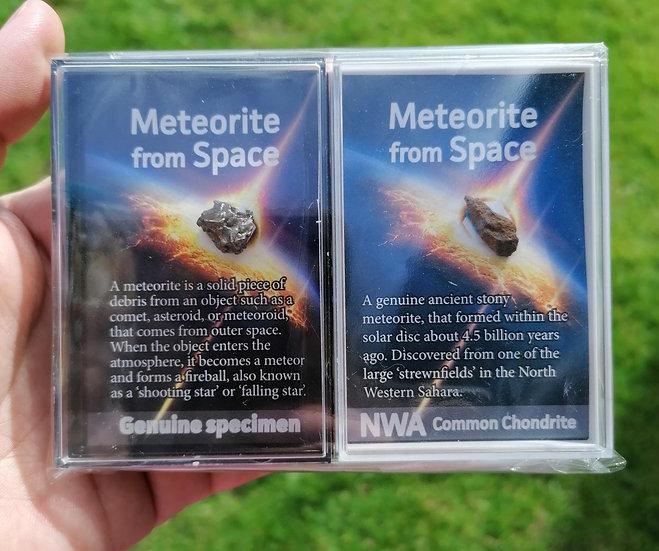 Meteorite Double Pack - Common Chondrite & Campo Del Cielo