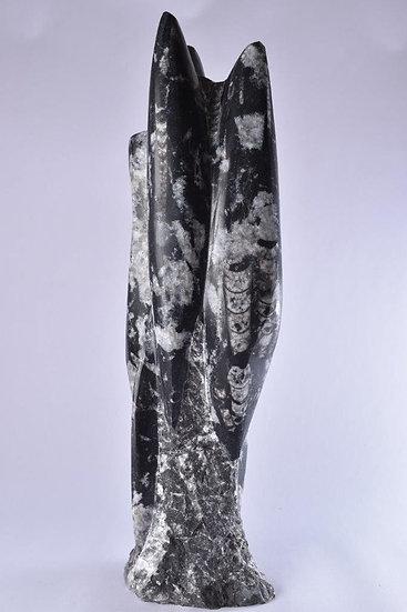 Medium Orthoceras Statue 2.9KG