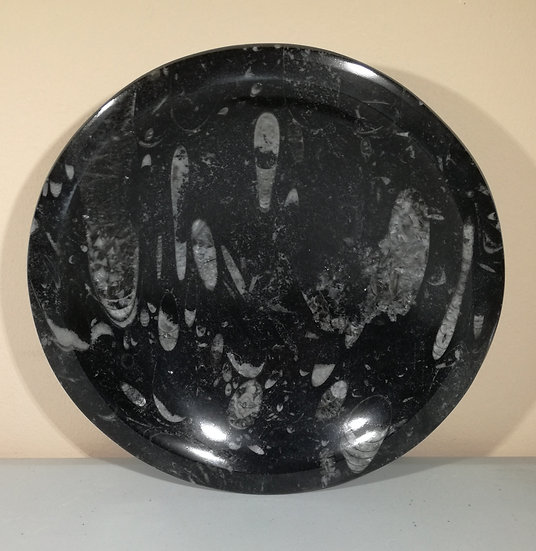 Medium Orthoceras Bowl