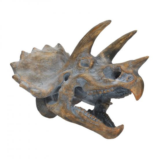 Large Triceratops Replica Skull