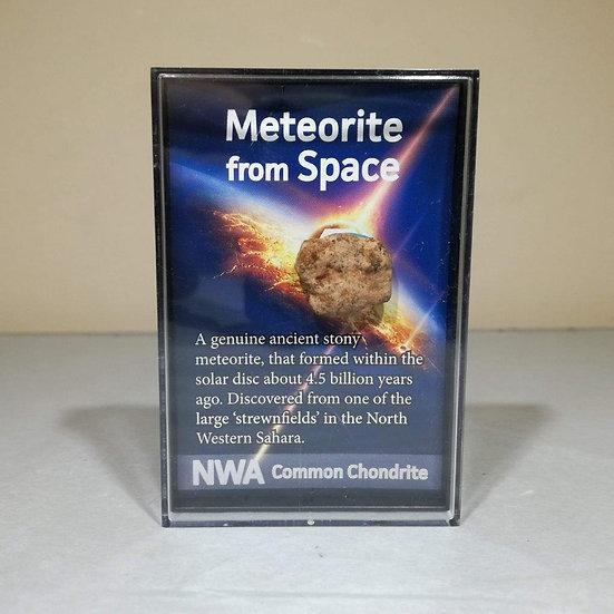 Premium Meteorite Fragment - Common Chondrite Meteorite In Display Case