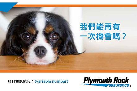 1021328-00002-00 Chinese Winback Postcar