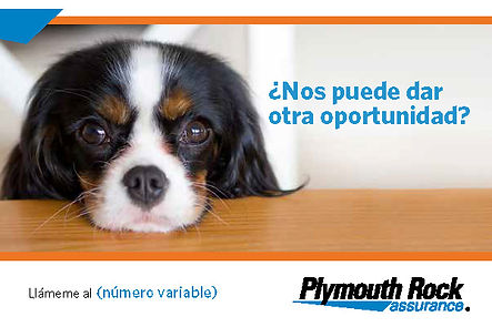 1021328-00003-00 Spanish Winback Postcar