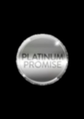 Platinum Promise.png