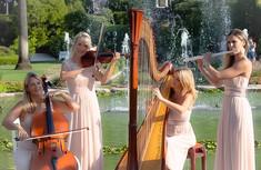 quatuor-harpsodyorchestra.jpeg