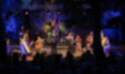 Harpsody Orchestra.jpg