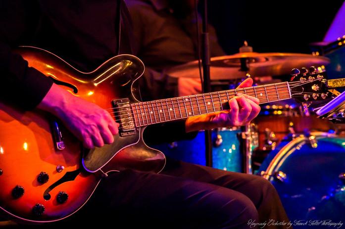 HOS-guitare.JPG