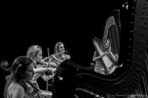 Harpsody Orchestra-quintette.jpg