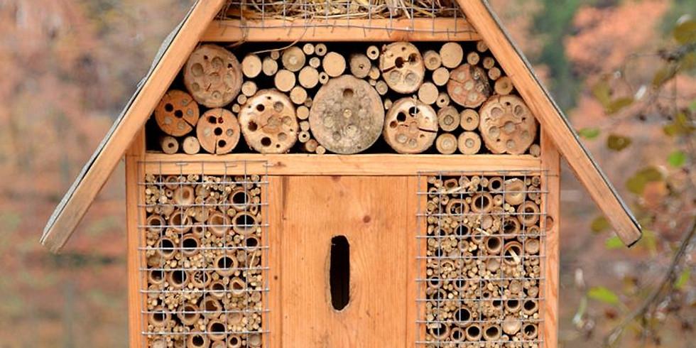 Build a Pollinator Hotel