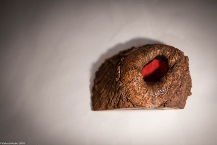 Buco Rosso-8222.jpg