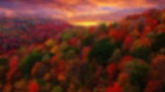 Paysage-d-automne.jpg