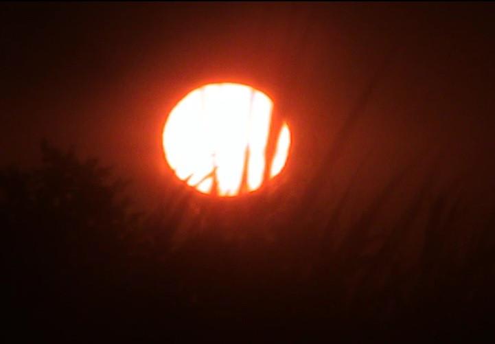 salut soleil 2.jpg