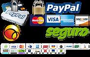 pagamento-seguro-paypal-pagseguro-mercad