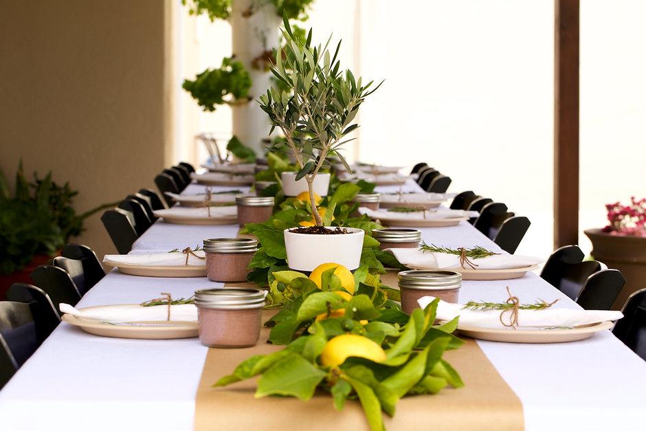 Lemon Table Setting.jpg