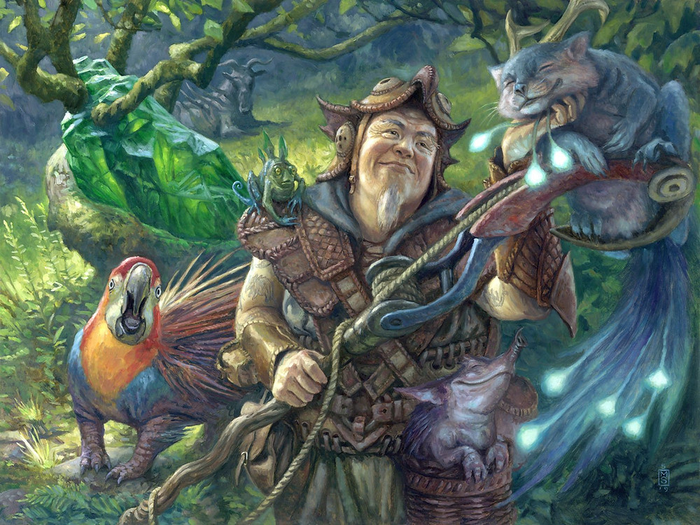 Old Man Surrounded by animals MTG art