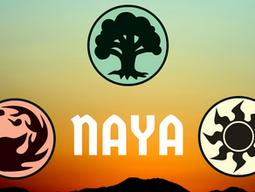 Naya Color Philosophy - Slicing the Pie