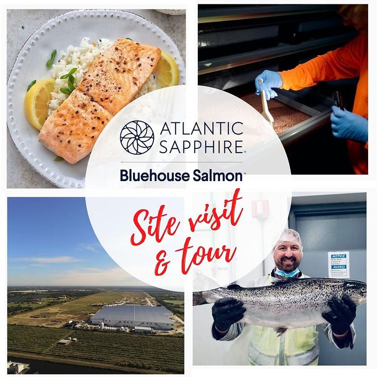 Atlantic Sapphire Blue House Tour - November (Details to follow)