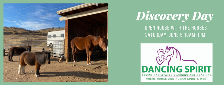 Discovery Day Facebook Cover.png