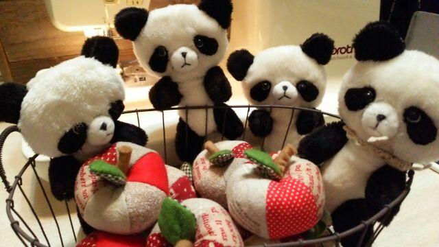 パンダとりんご♪