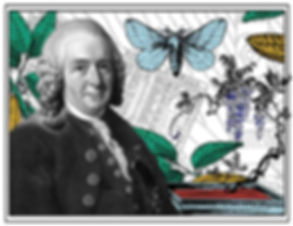 Carl Linnaeus a.k.a. Carl von Linne digital collage image by V.Neblik