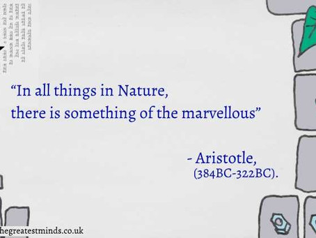 3 Great Nature-Quotes from 3 Great Minds: Aristotle, Rachel Carson & Louis Agassiz.