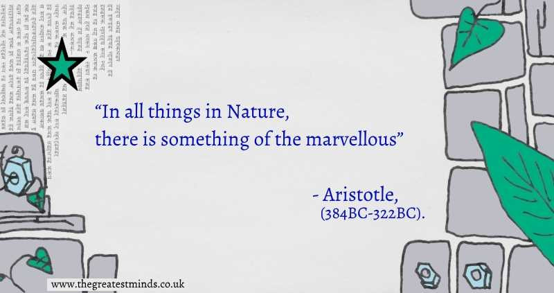 "Quote on green, grey and blue background with leaves, stars, cogs and stone slabs-""In all things in Nature, there is something of the marvellous""- Aristotle"