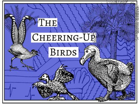 The Cheering-Up Birds: Part 3