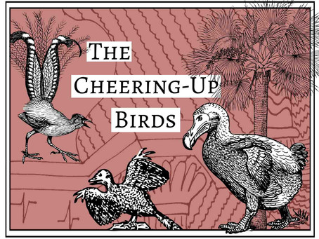 Cheering-Up Birds: Part 1