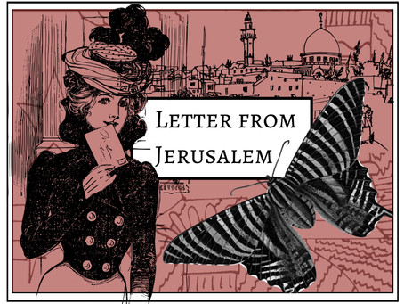 Letter From Jerusalem- Geckos, Hyenas and Skinks.
