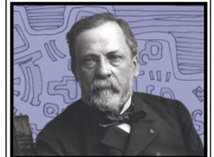 Louis Pasteur on BLUE STAIN ve shrunk to