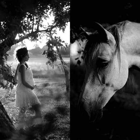 Melodie & Ses chevaux