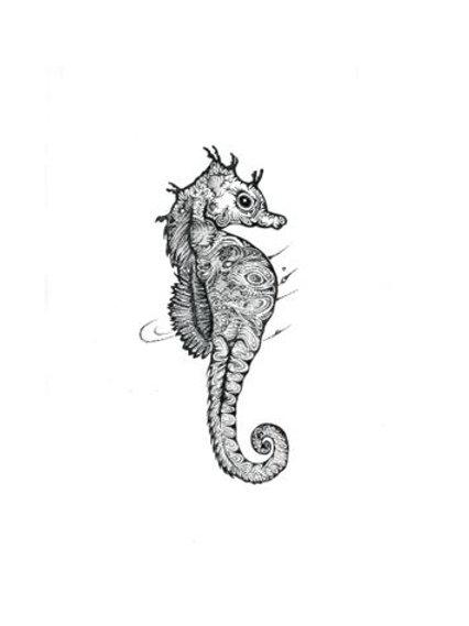 Seahorse Hippocampus