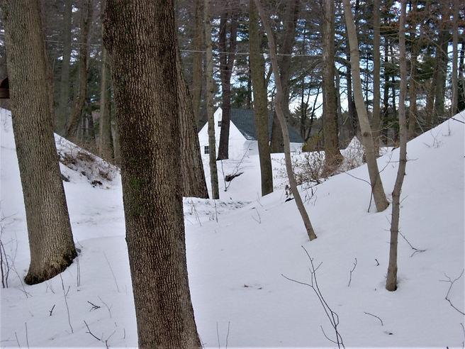 Winter Retreat - $325