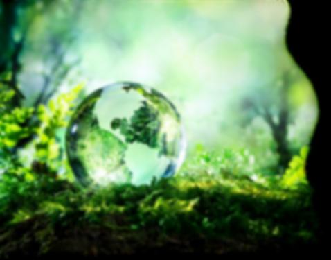 GlassGlobe-50pcX.png