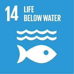 SDG-14 at 240s.jpg