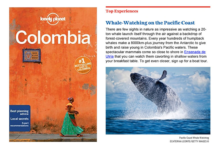 LOnely Planet Colombia.jpg