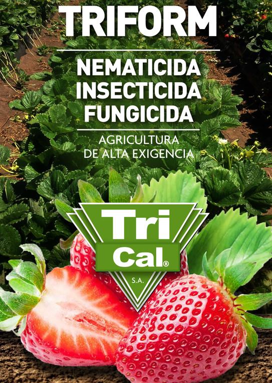 Fumigación de suelos en FRUTILLAS. Beneficios fitosanitarios y nutricionales.