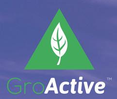 Groactive
