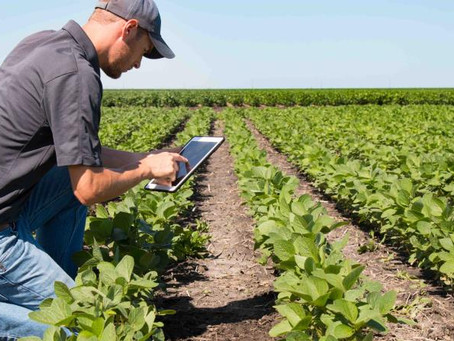 Agricultura y Teletrabajo. Agromarketing Digital.