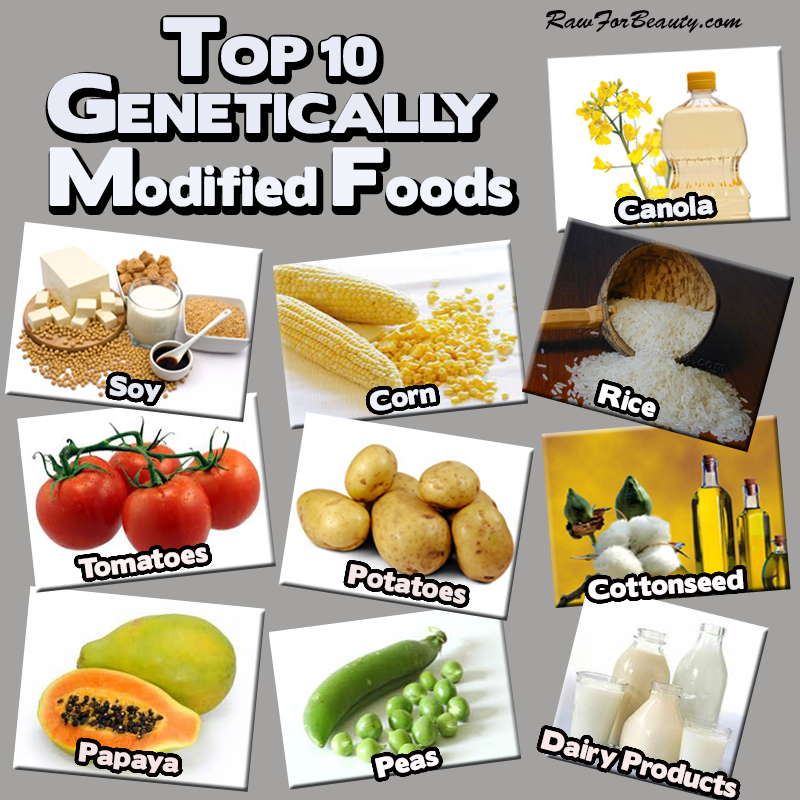 GMO-Foods.png