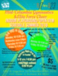 Back page Camp Flyer.jpg