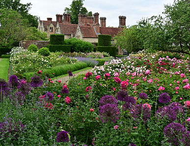 Borde Hill Rose Garden -June 2020 cr EC_