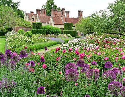 Borde Hill Garden -Rose Garden and alliu