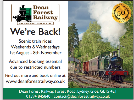 forest railway.PNG