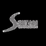 Siitam-Logo3_edited.png