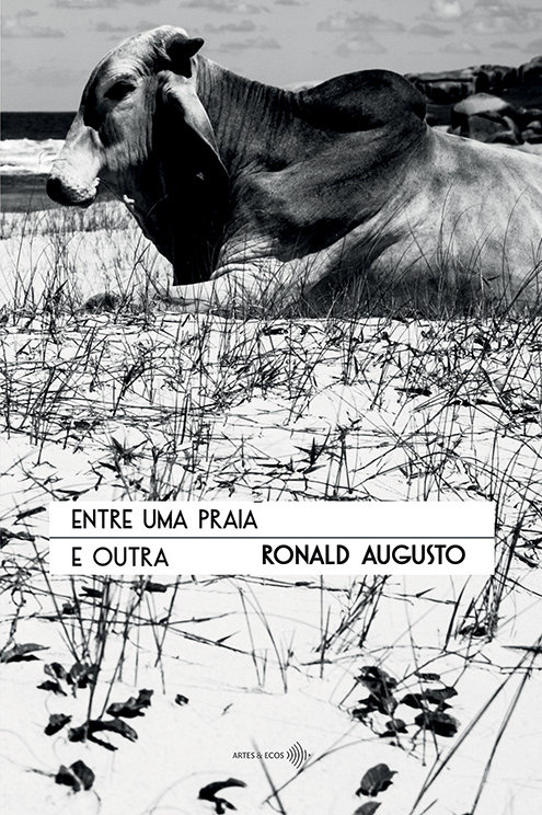Entre uma praia e outra — Ronald Augusto