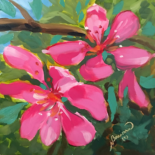 modern, contemporary art, cherry blossoms, pink, bright pink, oil painting