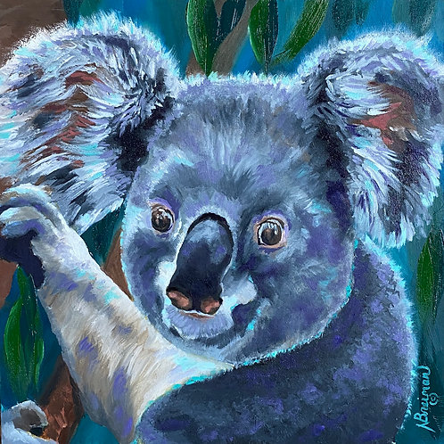 Koala, Koala Bear, Blue, Green, Australia, Australian animals, bear, Kobe Koala,